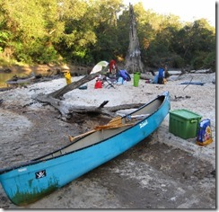 desoto_national_forest_canoeing